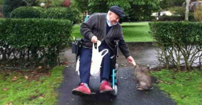 El perfil del usuario de residencia de mayores en España paga una media de 2.000 euros al mes y vive allí durante dos años.