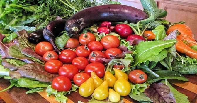Dieta mediterránea contra la fragilidad de los mayores